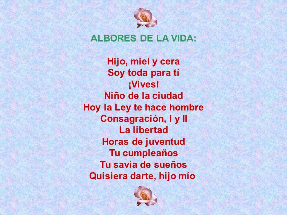 EN TUS VEINTISIETE AÑOS Sube, hijo, a Guadalupe en la conmemoración de tus veintisiete años: ¡que se cumpla la ilusión!.