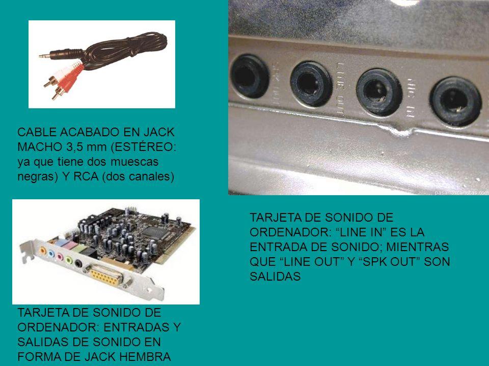 CABLE ACABADO EN JACK MACHO 3,5 mm (ESTÉREO: ya que tiene dos muescas negras) Y RCA (dos canales) TARJETA DE SONIDO DE ORDENADOR: ENTRADAS Y SALIDAS D