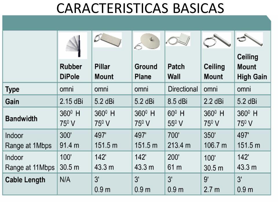 CARACTERISTICAS BASICAS
