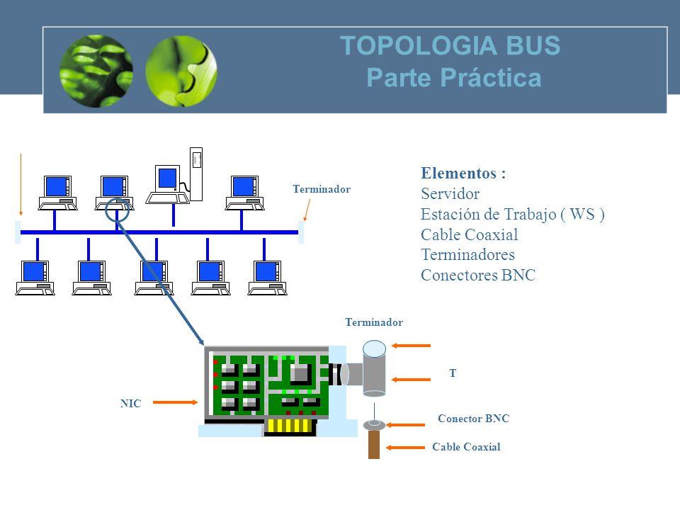 TOPOLOGIA BUS Parte Práctica Elementos : Servidor Estación de Trabajo ( WS ) Cable Coaxial Terminadores Conectores BNC Terminador Conector BNC Cable Coaxial T NIC