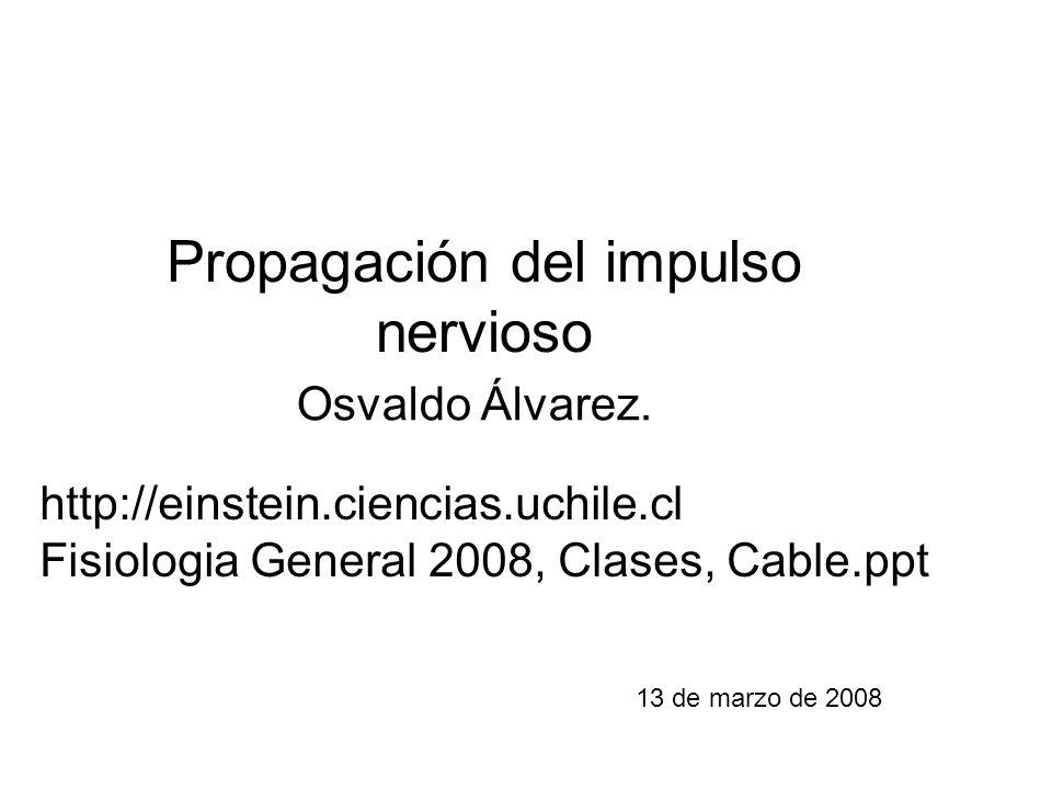 Propagación del impulso nervioso 13 de marzo de 2008 Osvaldo Álvarez. http://einstein.ciencias.uchile.cl Fisiologia General 2008, Clases, Cable.ppt
