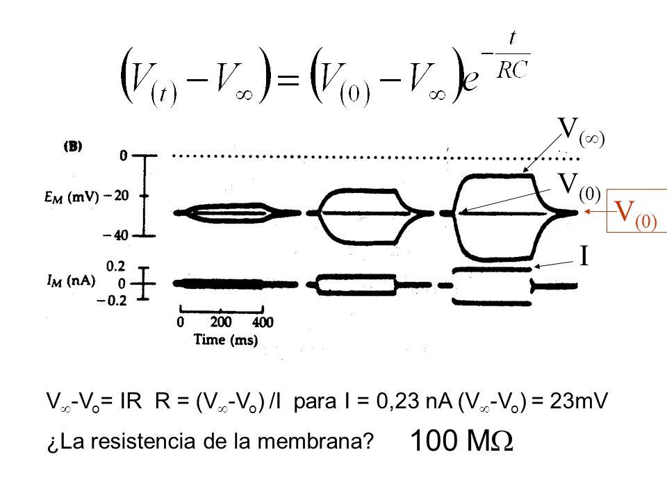 V ( ) V (0) I V -V o = IR R = (V -V o ) /I para I = 0,23 nA (V -V o ) = 23mV ¿La resistencia de la membrana? 100 M V (0)