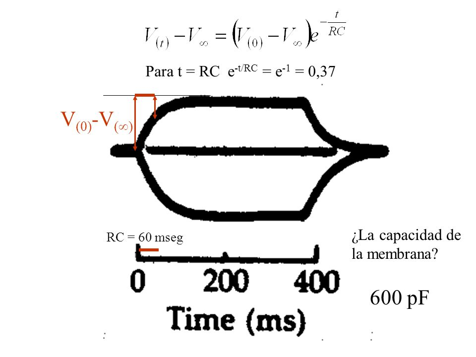 Para t = RC e -t/RC = e -1 = 0,37 V (0) -V ( ) RC = 60 mseg ¿La capacidad de la membrana? 600 pF