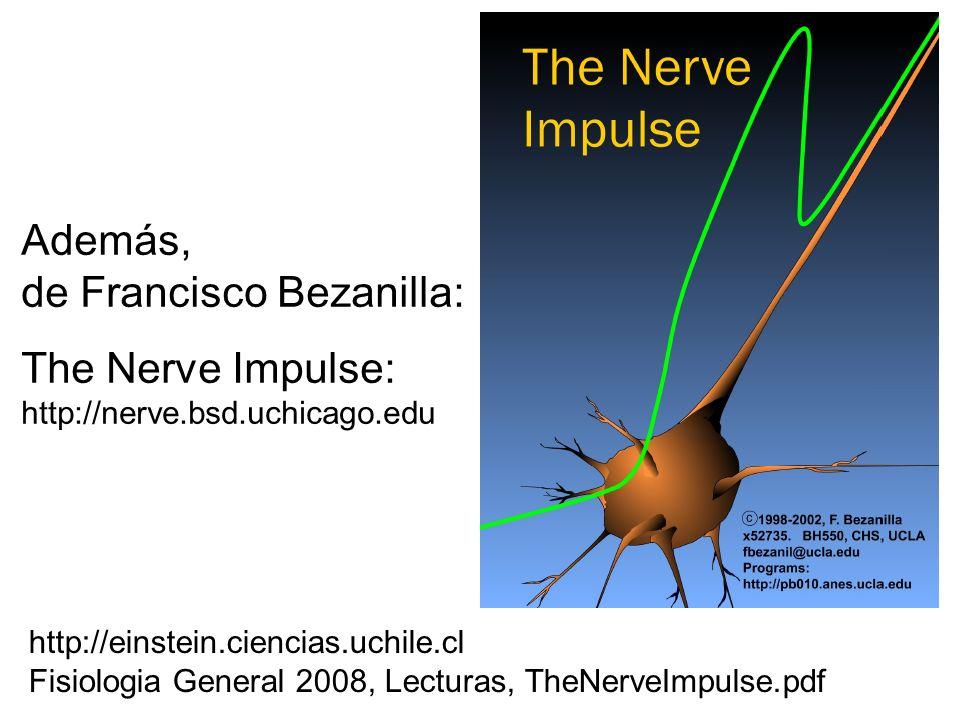 Además, de Francisco Bezanilla: The Nerve Impulse: http://nerve.bsd.uchicago.edu http://einstein.ciencias.uchile.cl Fisiologia General 2008, Lecturas, TheNerveImpulse.pdf
