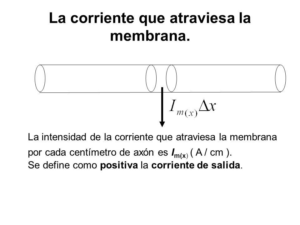 La corriente que atraviesa la membrana. La intensidad de la corriente que atraviesa la membrana por cada centímetro de axón es I m(x) ( A / cm ). Se d