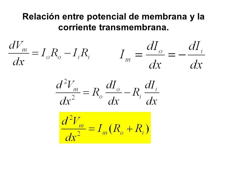 Relación entre potencial de membrana y la corriente transmembrana.