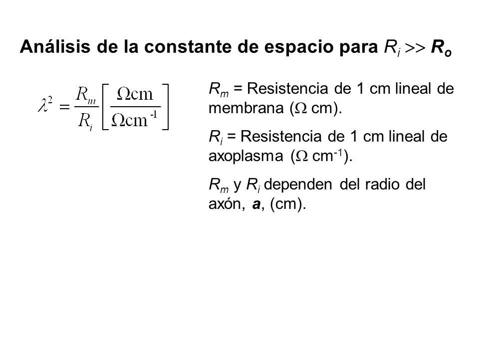 Análisis de la constante de espacio para R i R o R m = Resistencia de 1 cm lineal de membrana ( cm). R i = Resistencia de 1 cm lineal de axoplasma ( c