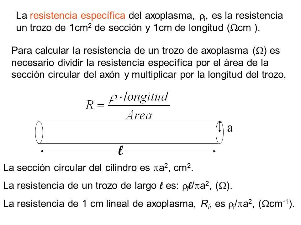 La resistencia específica del axoplasma, i, es la resistencia un trozo de 1cm 2 de sección y 1cm de longitud ( cm ). Para calcular la resistencia de u