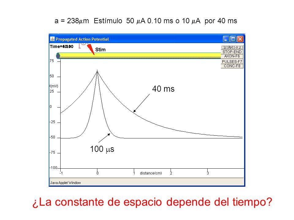 a = 238 m Estímulo 50 A 0.10 ms o 10 A por 40 ms 40 ms 100 s ¿La constante de espacio depende del tiempo?