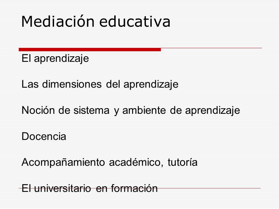 El aprendizaje Las dimensiones del aprendizaje Noción de sistema y ambiente de aprendizaje Docencia Acompañamiento académico, tutoría El universitario
