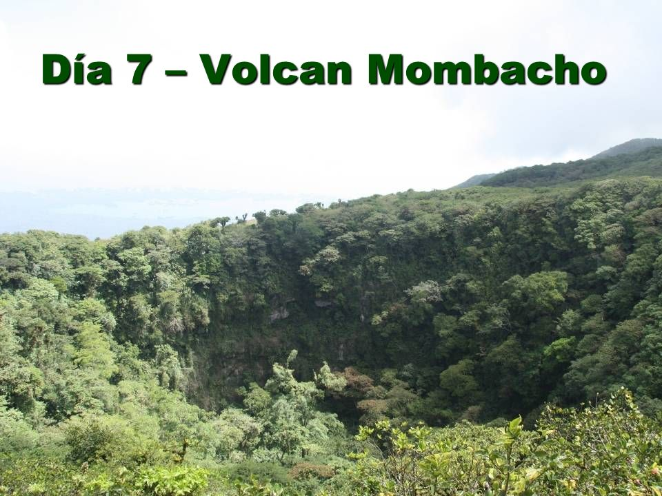 Día 7 – Volcan Mombacho