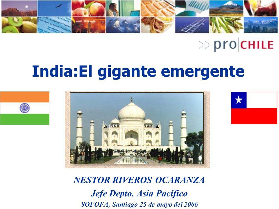 NESTOR RIVEROS OCARANZA Jefe Depto. Asia Pacífico SOFOFA, Santiago 25 de mayo del 2006 India:El gigante emergente