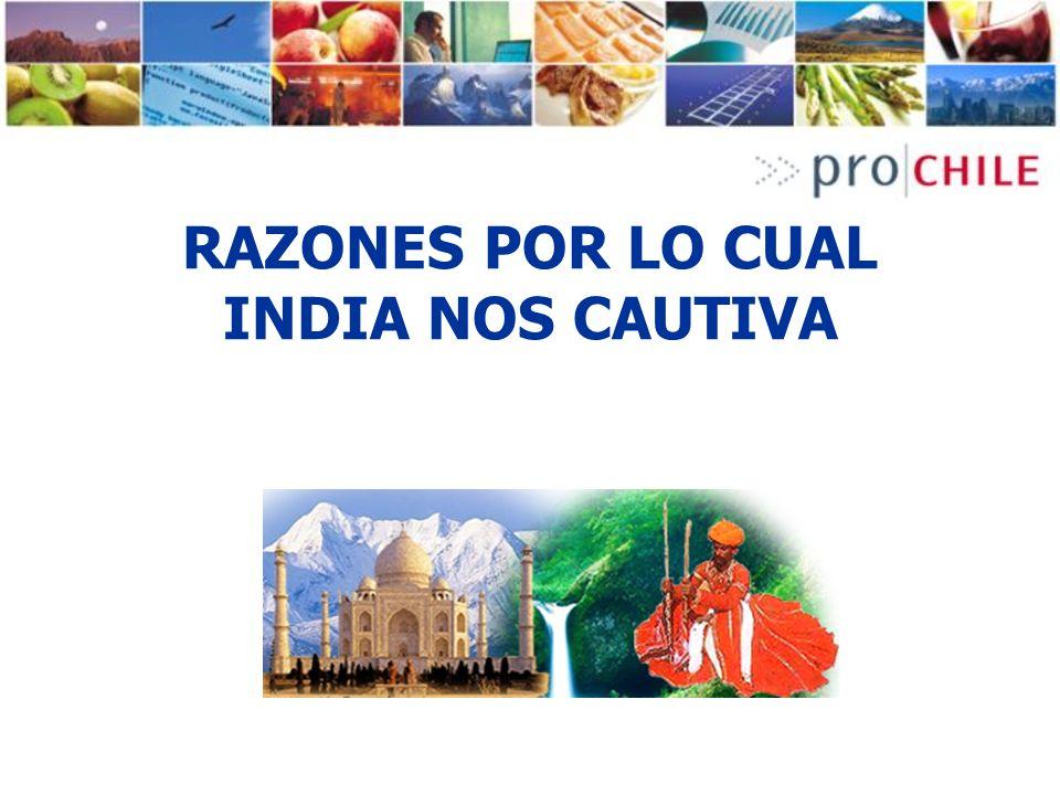 RAZONES POR LO CUAL INDIA NOS CAUTIVA