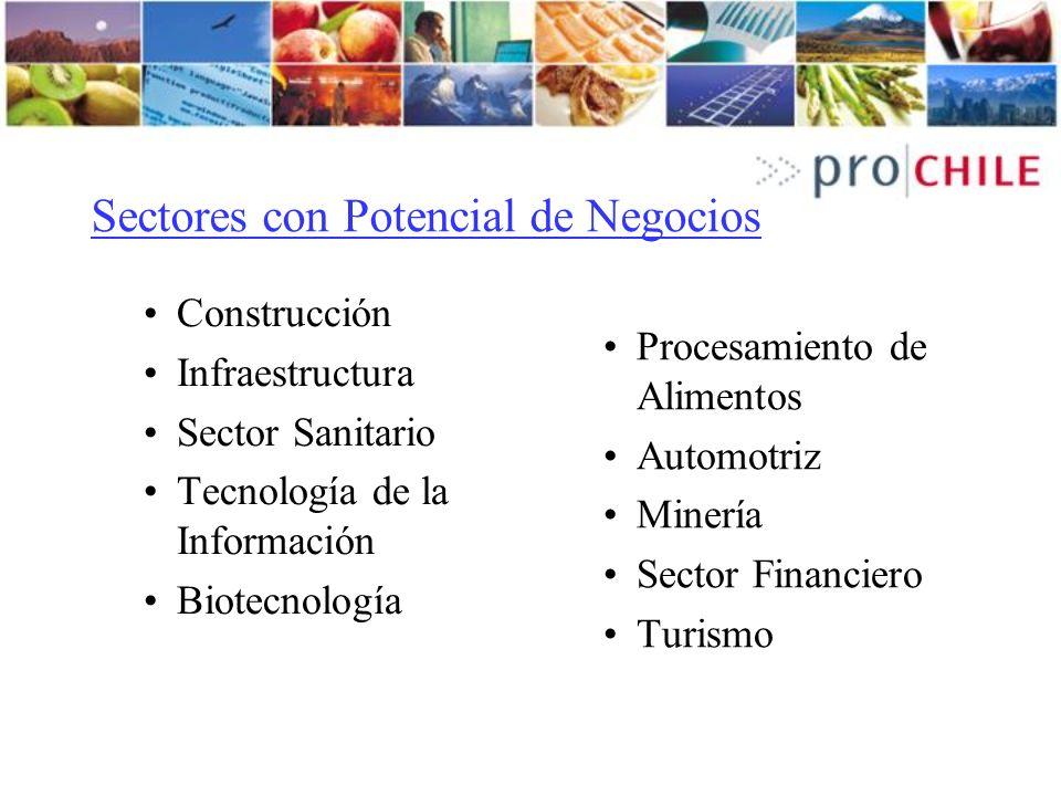 Sectores con Potencial de Negocios Construcción Infraestructura Sector Sanitario Tecnología de la Información Biotecnología Procesamiento de Alimentos Automotriz Minería Sector Financiero Turismo