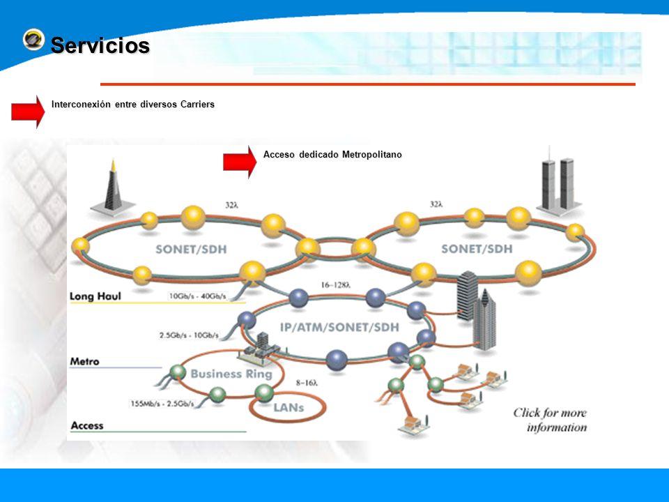 Interconexión entre diversos Carriers Acceso dedicado Metropolitano Servicios