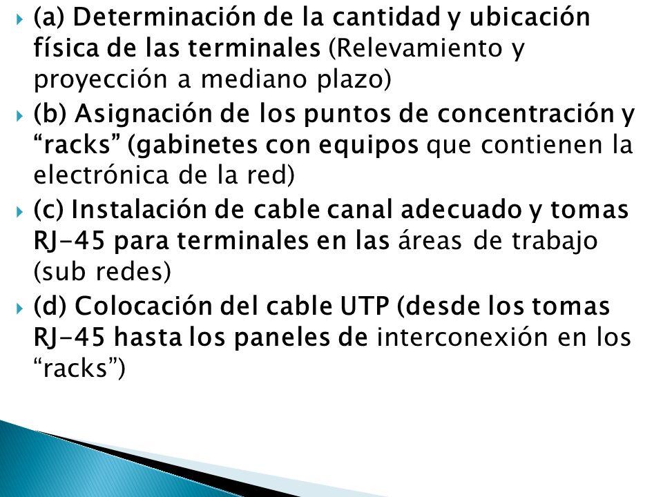 (a) Determinación de la cantidad y ubicación física de las terminales (Relevamiento y proyección a mediano plazo) (b) Asignación de los puntos de conc
