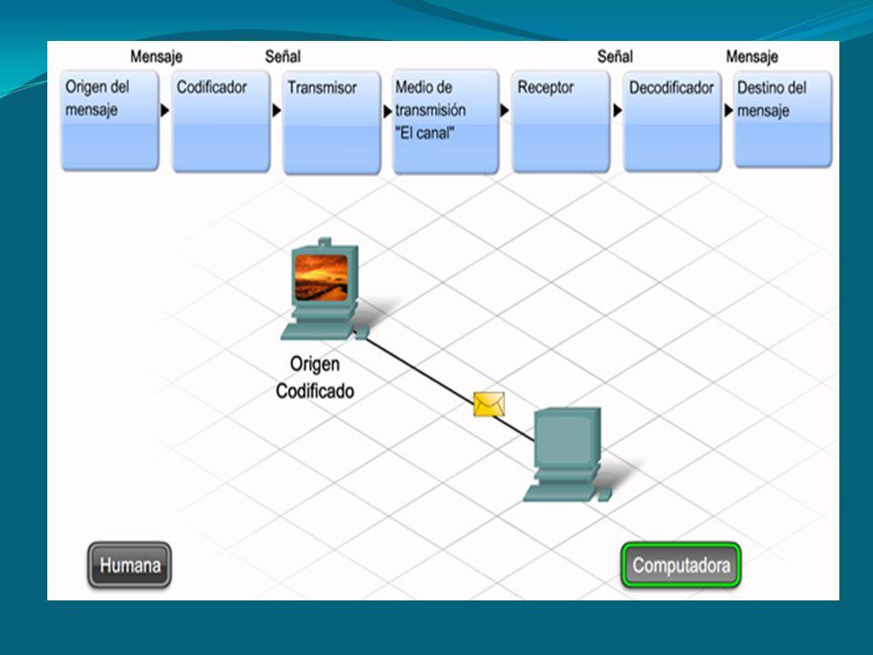 2.20Host en redes locales y remotas En una LAN, es posible colocar todos los hosts en una sola red local o dividirlos en varias redes conectadas por una capa de distribución.