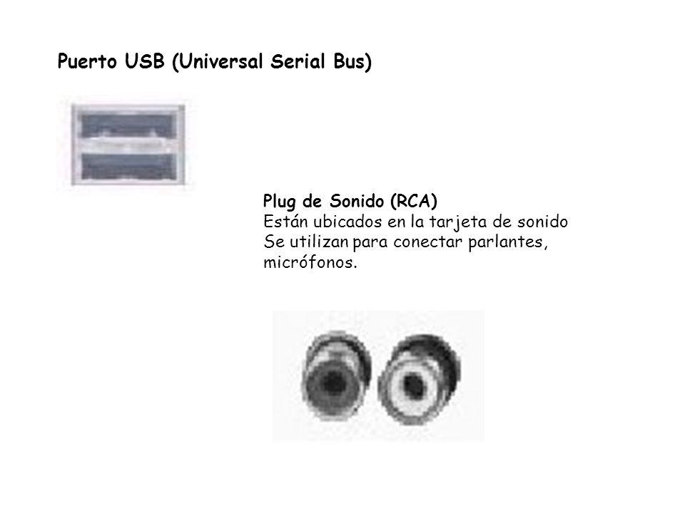 Puerto USB (Universal Serial Bus) Plug de Sonido (RCA) Están ubicados en la tarjeta de sonido Se utilizan para conectar parlantes, micrófonos.