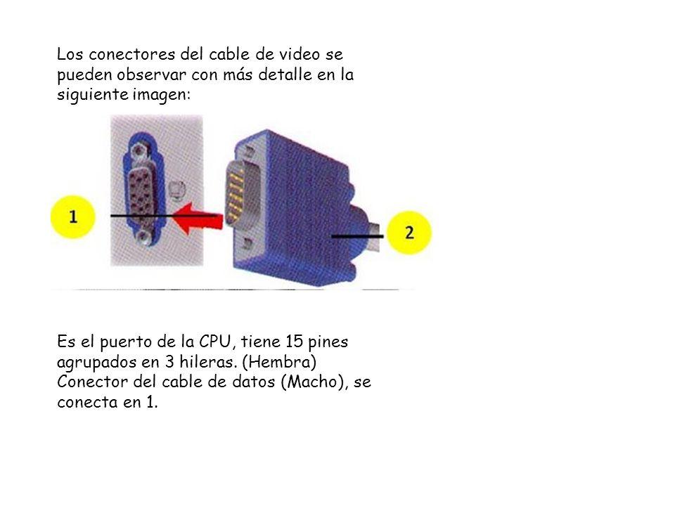 Los conectores del cable de video se pueden observar con más detalle en la siguiente imagen: Es el puerto de la CPU, tiene 15 pines agrupados en 3 hil