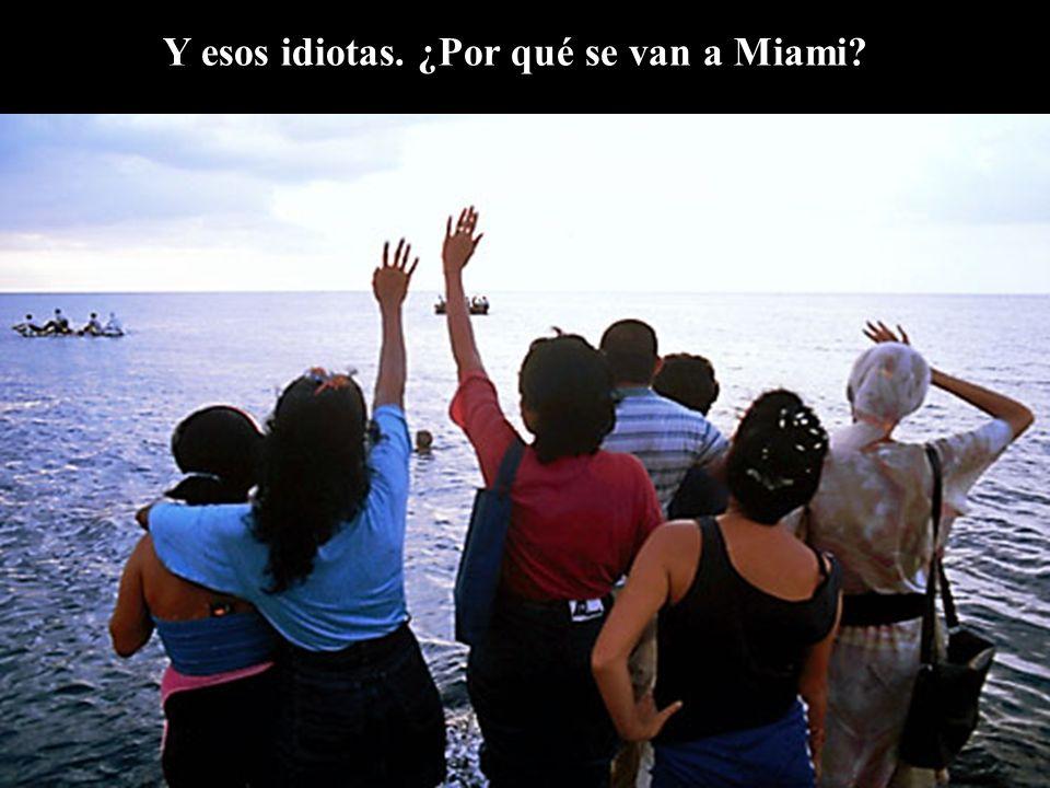 Y esos idiotas. ¿Por qué se van a Miami?