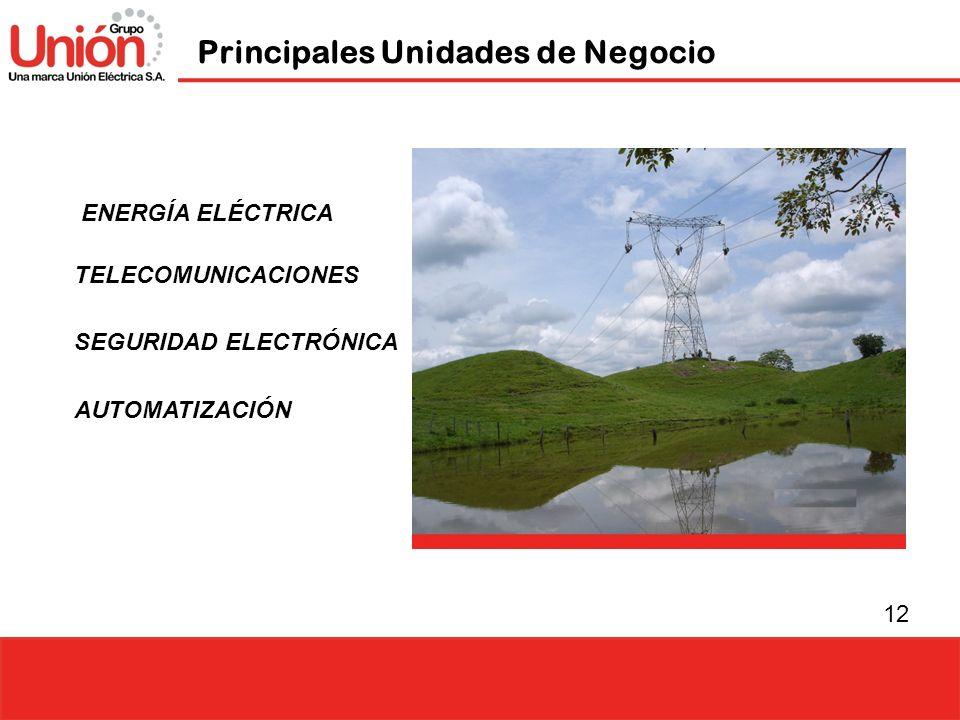 12 ENERGÍA ELÉCTRICA Principales Unidades de Negocio TELECOMUNICACIONES SEGURIDAD ELECTRÓNICA AUTOMATIZACIÓN