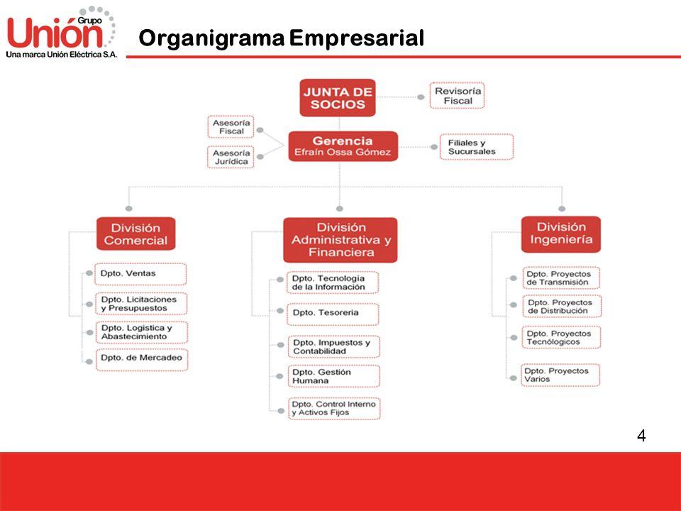 4 Organigrama Empresarial