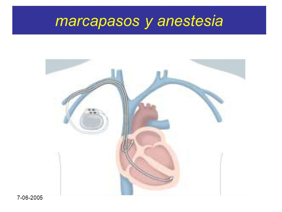 7-06-2005 SARTD CONSORCIO HOSPITAL GENERAL UNIVERSITARIO DE VALENCIA