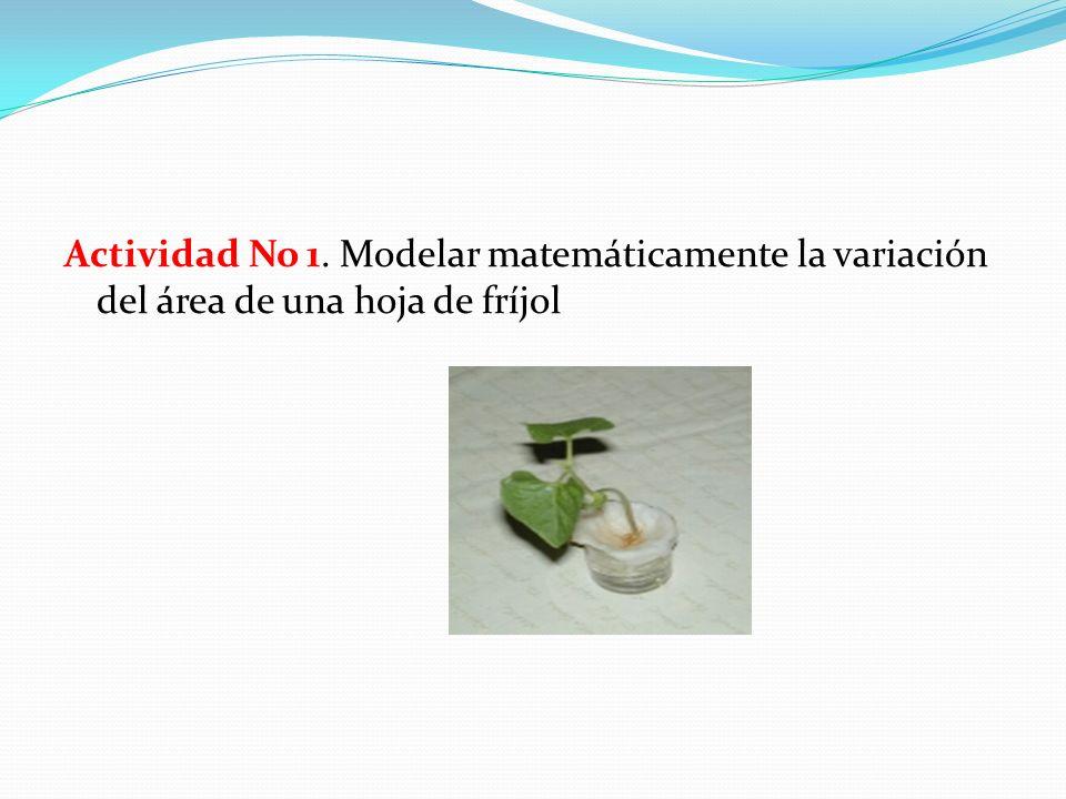 Actividad No 1. Modelar matemáticamente la variación del área de una hoja de fríjol