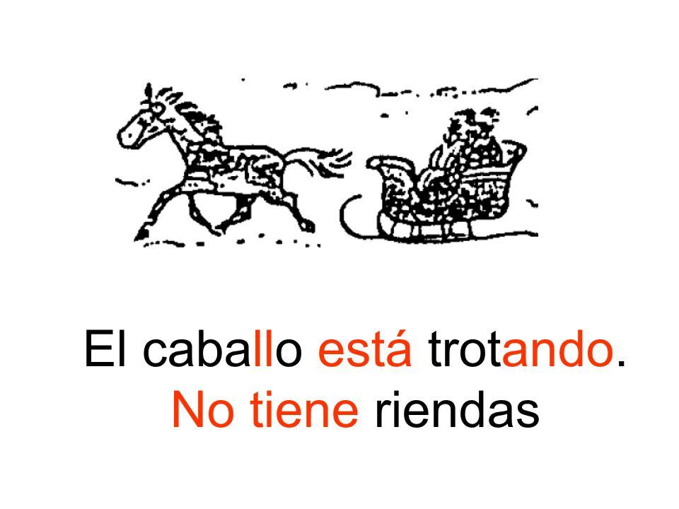 El caballo está trotando. No tiene riendas
