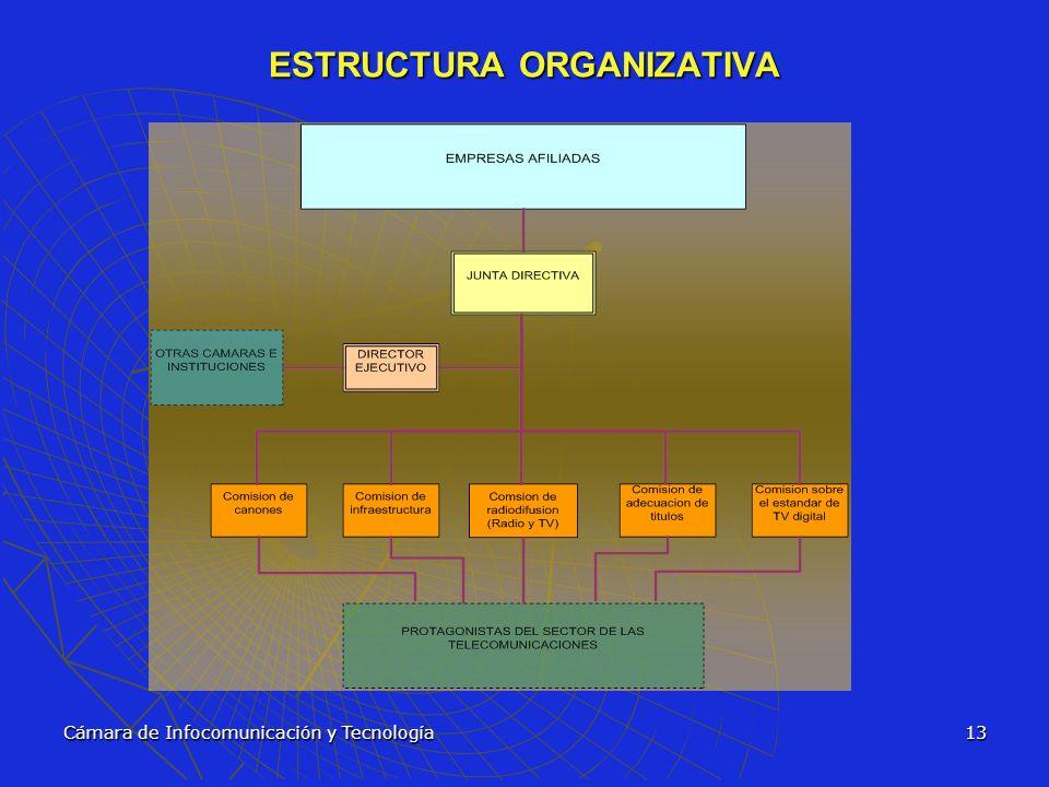 Cámara de Infocomunicación y Tecnología13 ESTRUCTURA ORGANIZATIVA