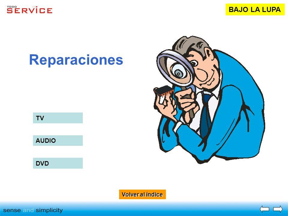 Volver al índice Volver al índice Reparaciones BAJO LA LUPA TV AUDIO DVD