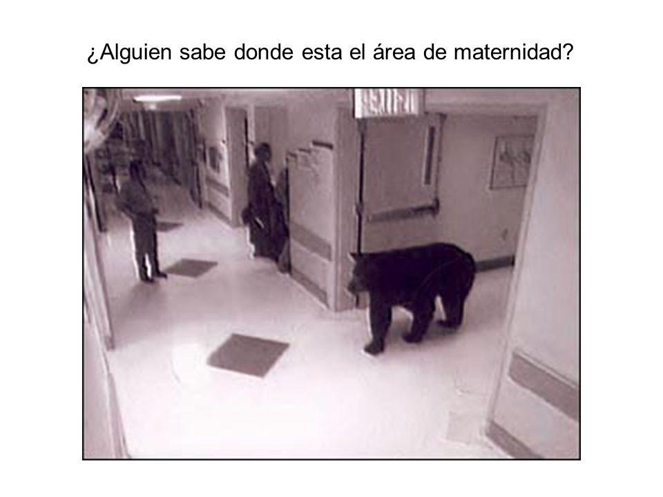 ¿Alguien sabe donde esta el área de maternidad?
