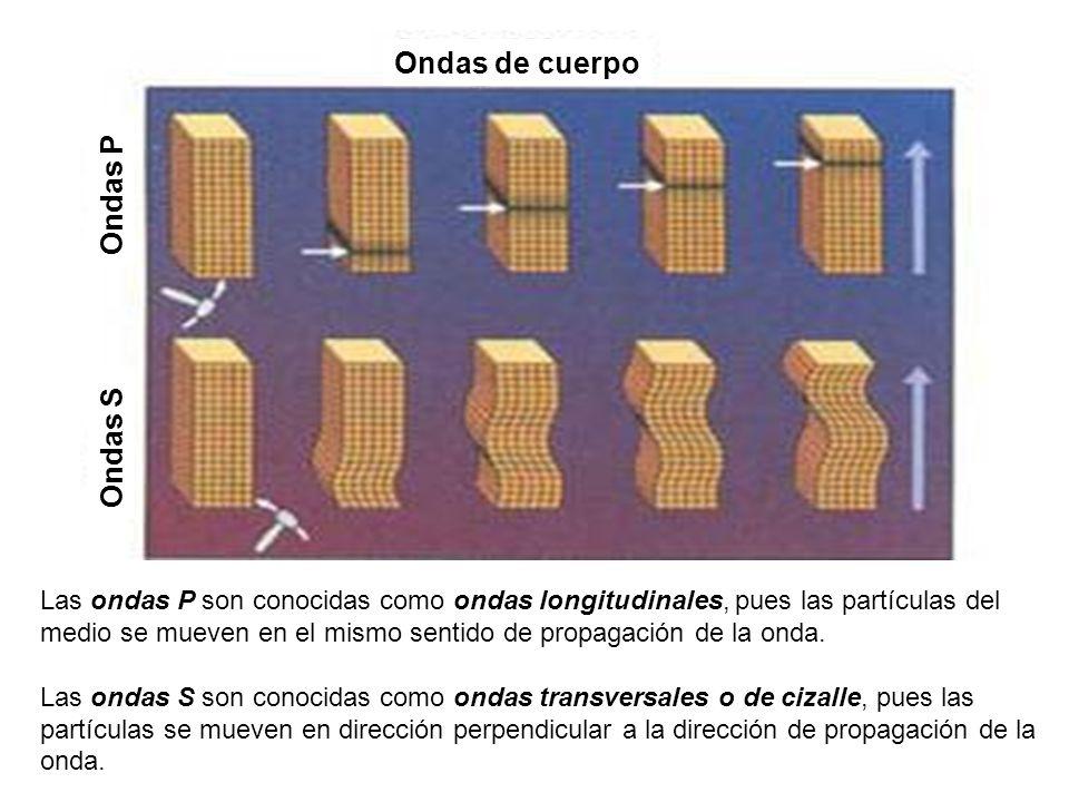 Las ondas P son conocidas como ondas longitudinales, pues las partículas del medio se mueven en el mismo sentido de propagación de la onda. Las ondas