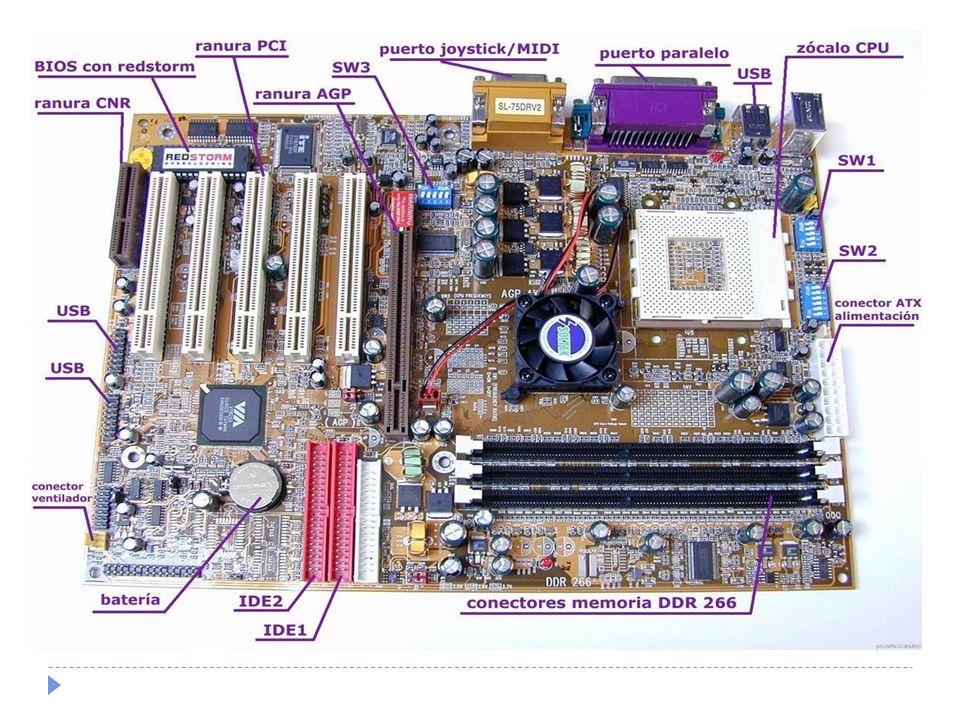 Procesador El cerebro de la computadora es el procesador CPU (Unidad Central de procesamiento).
