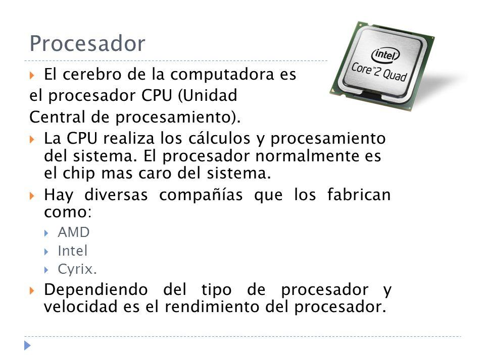 Procesador El cerebro de la computadora es el procesador CPU (Unidad Central de procesamiento). La CPU realiza los cálculos y procesamiento del sistem