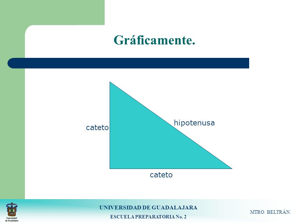 UNIVERSIDAD DE GUADALAJARA ESCUELA PREPARATORIA No. 2 MTRO. BELTRÁN. Gráficamente. hipotenusa cateto