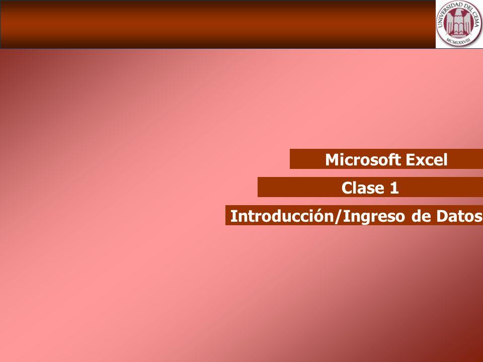 Microsoft Excel Clase 1 Introducción/Ingreso de Datos