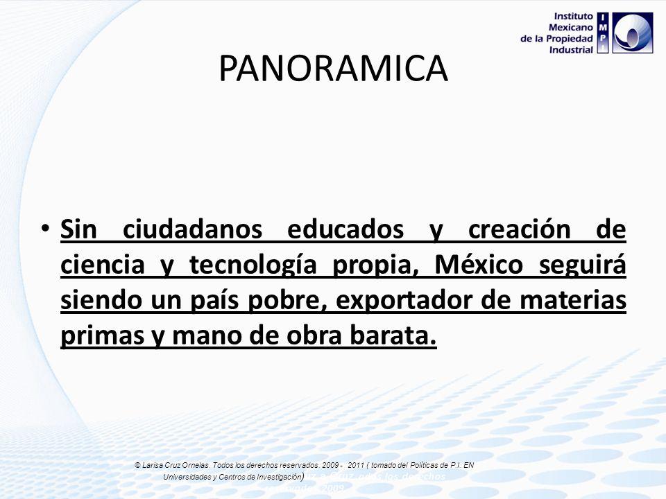 Inversión en I+D por sector (México) © Laris C © Larisa Cruz Ornelas. Todos los derechos reservados. 2009 -2011 ( tomado del Políticas de P.I. EN Univ