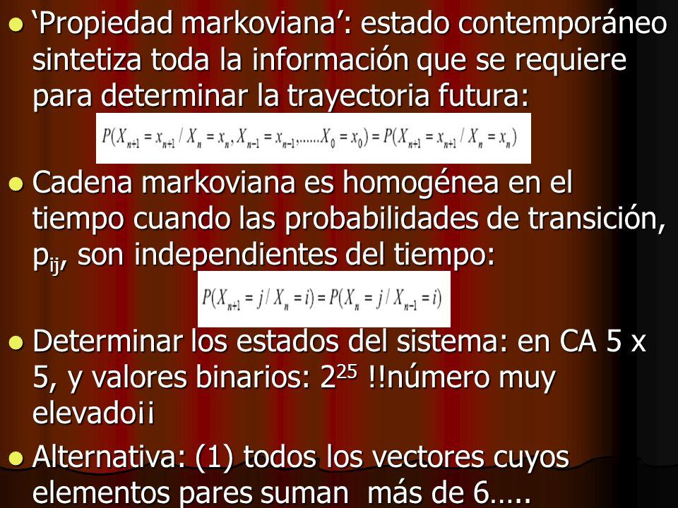 Propiedad markoviana: estado contemporáneo sintetiza toda la información que se requiere para determinar la trayectoria futura: Propiedad markoviana: