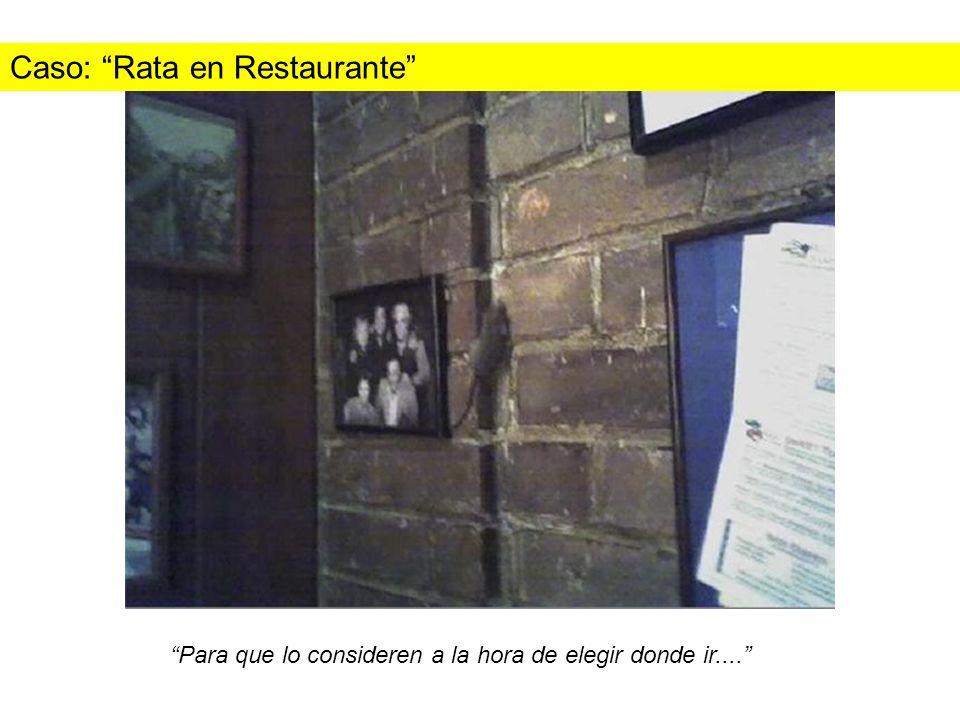 Caso: Rata en Restaurante Para que lo consideren a la hora de elegir donde ir....