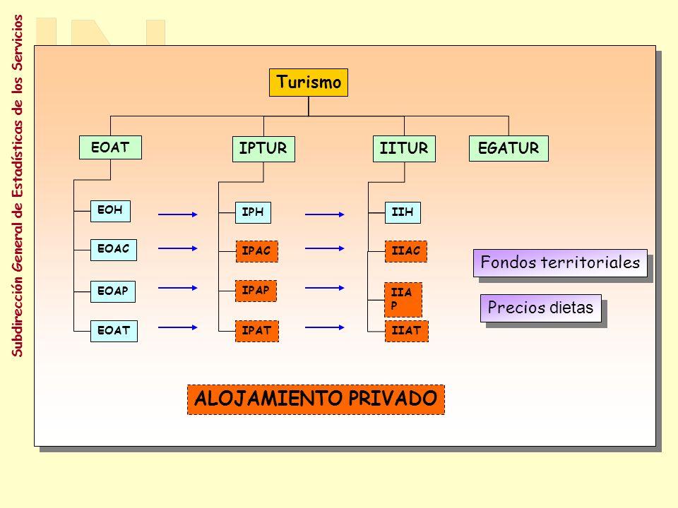 Subdirección General de Estadísticas de los Servicios Subd.