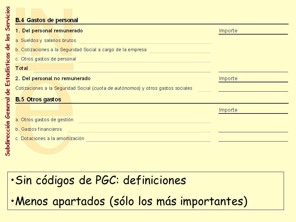 Subdirección General de Estadísticas de los Servicios Sin códigos de PGC: definiciones Menos apartados (sólo los más importantes)