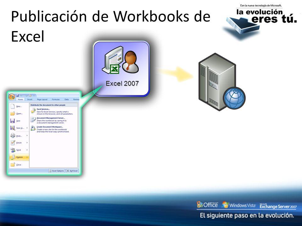 Publicación de Workbooks de Excel Excel 2007