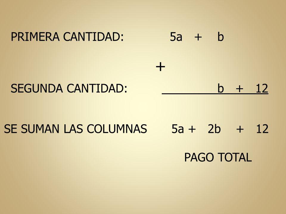PRIMERA CANTIDAD: 5a + b SEGUNDA CANTIDAD: + b + 12 SE SUMAN LAS COLUMNAS 5a + 2b + 12 PAGO TOTAL