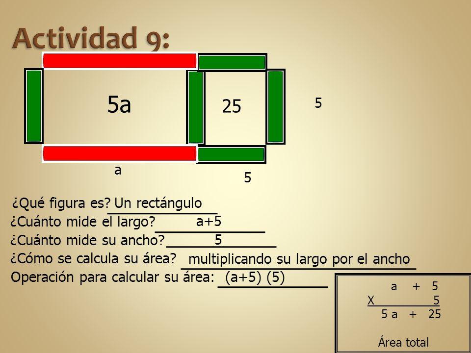 5 25 a 5 5a ¿Qué figura es? ¿Cuánto mide el largo? ¿Cuánto mide su ancho? ¿Cómo se calcula su área? Operación para calcular su área: Un rectángulo a+5