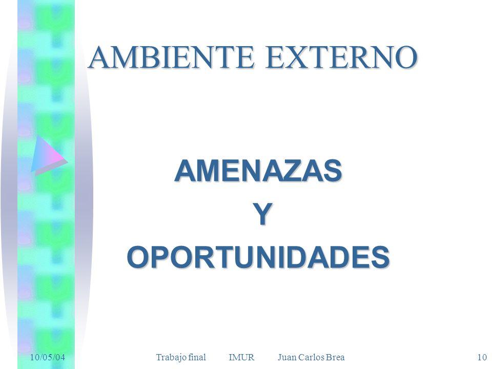10/05/04 Trabajo final IMUR Juan Carlos Brea10 AMBIENTE EXTERNO AMENAZAS YOPORTUNIDADES
