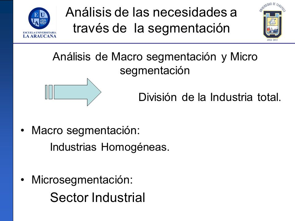 Análisis de Macro segmentación y Micro segmentación División de la Industria total. Macro segmentación: Industrias Homogéneas. Microsegmentación: Sect