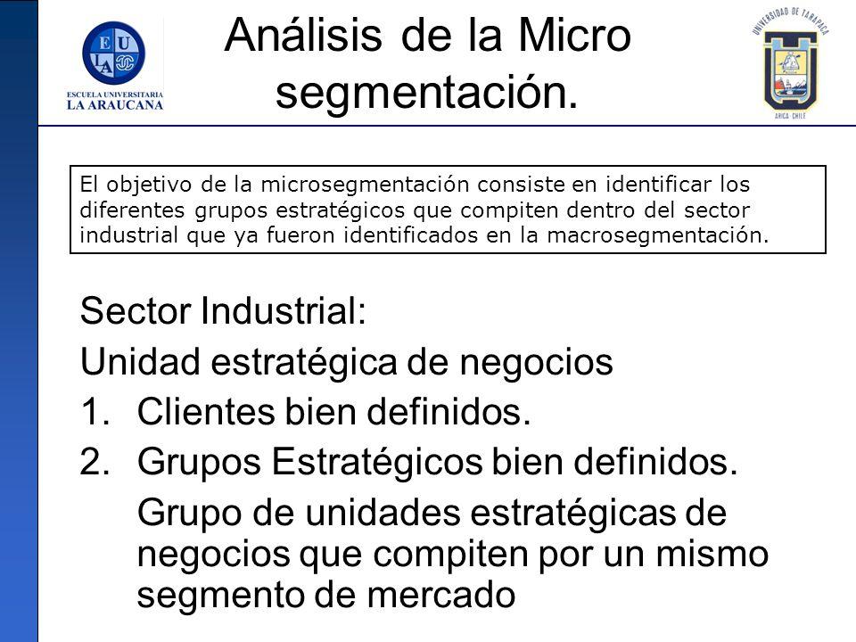 Análisis de la Micro segmentación. Sector Industrial: Unidad estratégica de negocios 1.Clientes bien definidos. 2.Grupos Estratégicos bien definidos.