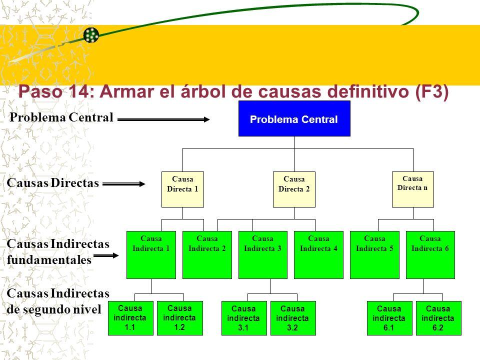 Paso 14: Armar el árbol de causas definitivo Por último, en base al árbol de causas preliminar y al análisis de oferta y demanda realizado, se elabora el árbol de causas definitivo, que se debe mostrar como las raíces del árbol de causas y efectos completo.