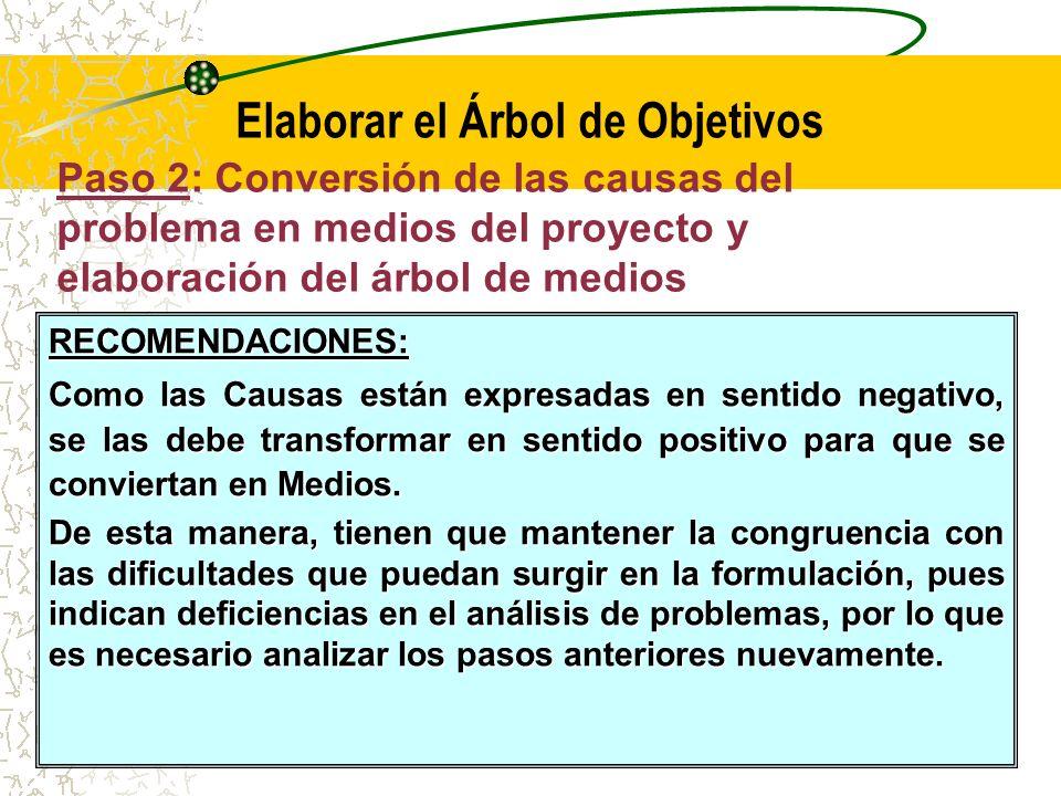 Paso 2: Conversión de las causas del problema en medios del proyecto y elaboración del árbol de medios